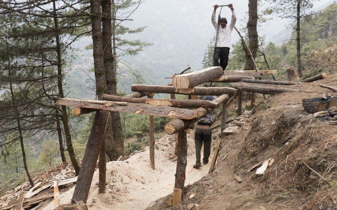 Lecciones: Delitos contra la seguridad de los trabajadores